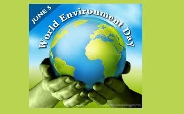 سواد زیست محیطی چیست؟