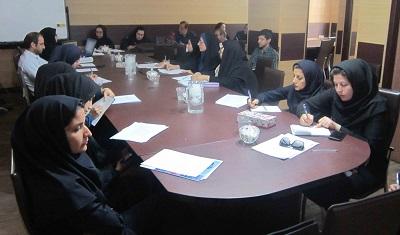 کارگاه اصول مقدماتی مقالهنویسی و آشنایی با نرم افزار ویراستار در شیراز برگزار شد