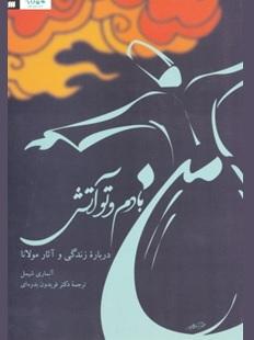 نقد کتاب من بادم و تو آتش: درباره زندگی و آثار مولانا