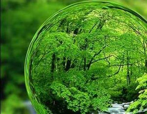 عکس نقاشی محیط زیست