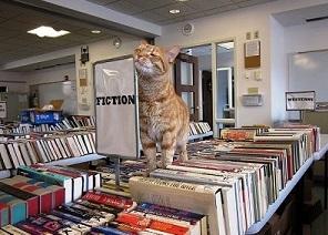 پیشنهاد به کتابداران محترم کتابخانه نوروسیسک روسیه