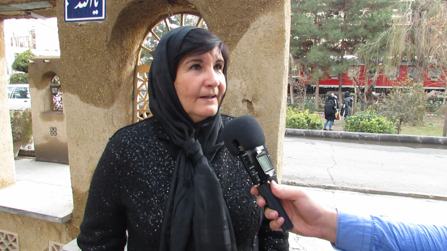 Iran Can Be a Model for Other Members of IFLA to Follow