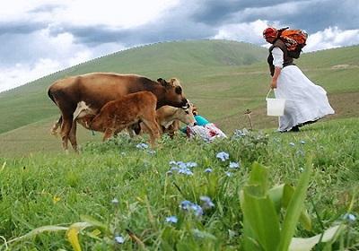 منابع طبیعی و منابع طبیعی در ایران