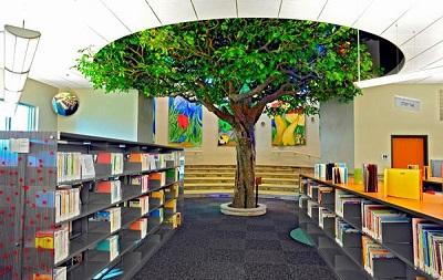 بهترین ایده کتابخانه سبز: کتابخانه سبز گامی بهسوی اندیشه سبز